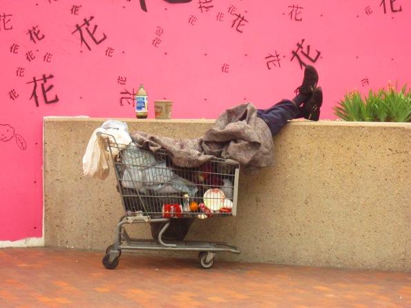 Homeless (5)